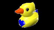 Cyan Duck 2 colour